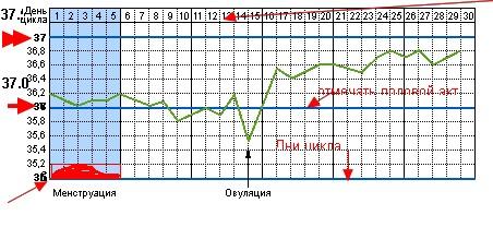 Базальная температура, график базальной температуры,консультация гинеколога, гинеколог, www.doktorv.com.ua, гинекологический каб